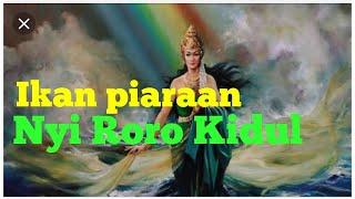 Video Inilah Ikan piaraan NYI RORO KIDUL MP3, 3GP, MP4, WEBM, AVI, FLV November 2018