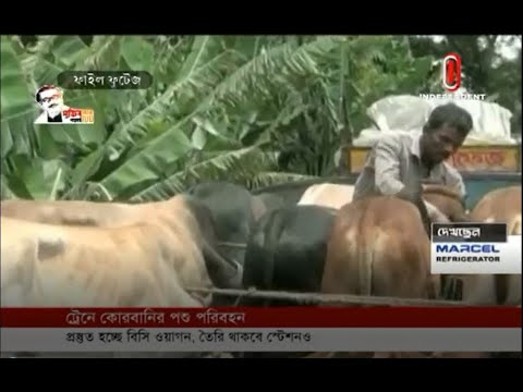 Preparation underway to supply sacrificial animals by freight train(14-07-20)Courtesy:Independent TV