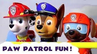 Paw Patrol Fun