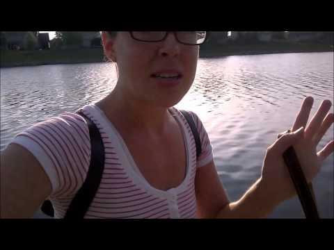 Wk 23 Raw Till 4: Seasonal Diet Changes, !@#$% Restricting, Weight Loss Plans