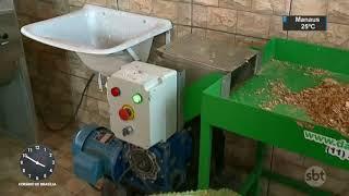 Uma escola infantil da cidade de Samambaia, no Distrito Federal, foi a segunda do país a ganhar uma máquina que transforma lixo orgânico em compostagem. Os próprios alunos participam do projeto levando os resíduos de casa para a escola, que ainda mantém uma horta com os adubos produzidos.