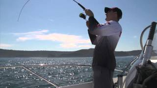Inshore fishing tips