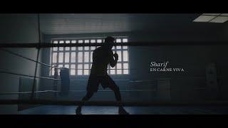 SHARIF – «En carne viva»