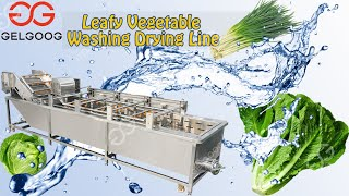 Air bubble washing machine Factory Price Fruit washing machine youtube video