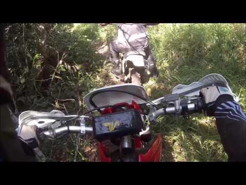 Trilha Crf 230 / Trilha em borebi / Trilheiros de Lp