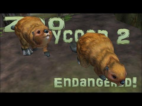 Quest Zoo! Seri's Accidental Kidlet Quadruplets!! - Episode #7