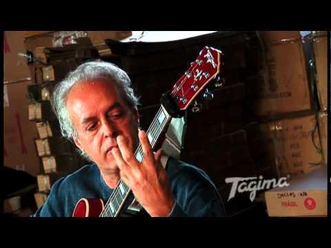 0 Guitarra Semi Acústica Tagima Blues 3000 (Visão Geral)
