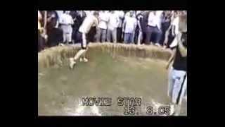 Noizy Vs England Boy [ Street Fightin K.O ]