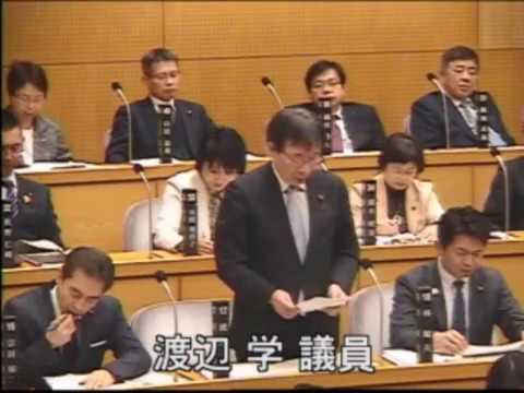 2018年第1回市議会での代表質疑(動画)