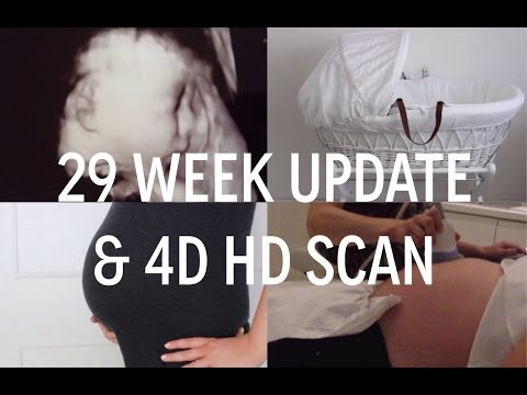 PREGNANCY VLOG 9- 29 Week Update & 4D HD Scan