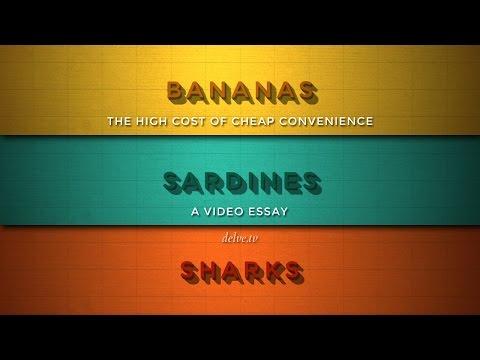 Banány, sardinky a žraloci