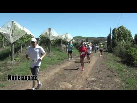 Circuito dos vinhedos São Joaquim 2014