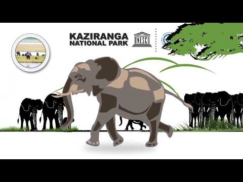 Report 3 of 2014 - Performance Audit on Kaziranga National Park-Issues and Challenges of Government of Assam