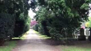 Tavistock United Kingdom  city photo : Graveyard Beauty - Cemeteries of Tavistock, Devon, UK.