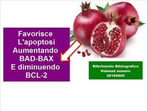 le importanti proprietà benefiche del melograno, il frutto della salute!