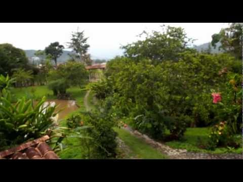 Video avHostal Selva y Cafe