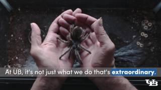 Spider Venom Video