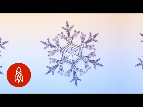 Physicist Explains How He Grows Snowflakes For Science  Was a  Snowflake Consultant  For