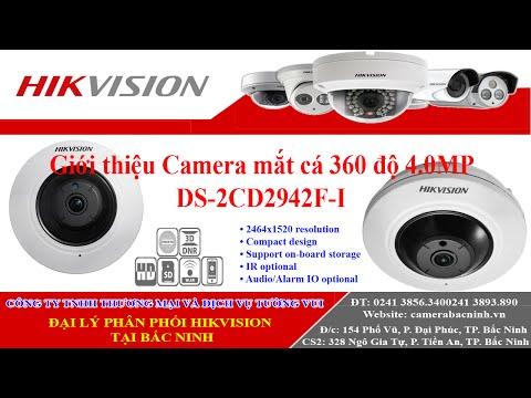 Camera Hikvision mắt cá 360 độ 4.0 Mp - DS-2CD2942F-I