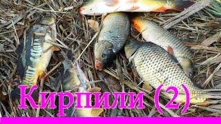 Ловля КАРПА на поплавочную удочку.Речка Кирпили(2)
