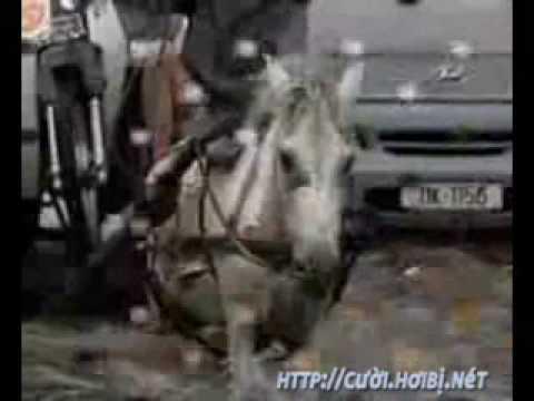 Video clip hài Nhạc chế vui Hà Nội mùa những cơn mưa
