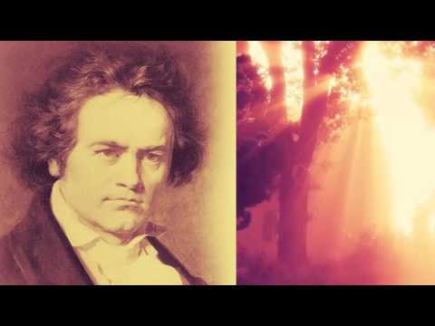 LUDWIG VAN BEETHOVEN _ Symphony No. 4 in B flat Major (Opus 60)