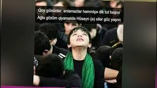Yixildi Seqqa Yere (Seyyid Mehemmed Amili) (yeni dini mahnilar mersiyeler) 2019