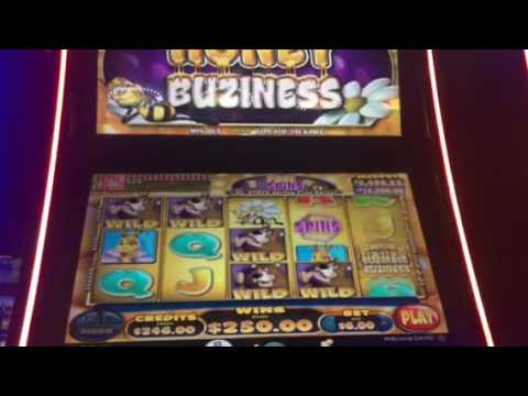 $6 Honey Buziness Slot Machine Bonus Huge Win Max Bet