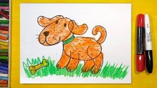 Видео: как нарисовать собаку для детей от 3 лет