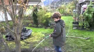 #599 Wie pflanze ich einen Grossbaum Teil 10v11 - Der Baum wird gewässert