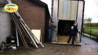 The 30th of November 2013 the first Guernsey cows set foot on Dutch soil. Imported by farmer Matthijs de Haan with the help of...