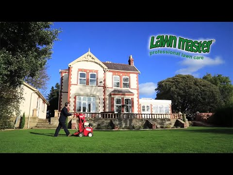 What Can Lawn Treatment Services Do for You?