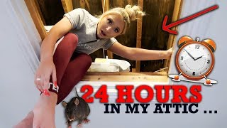 Video 24 hours in my TINY attic .. * The fright of my life * MP3, 3GP, MP4, WEBM, AVI, FLV November 2018