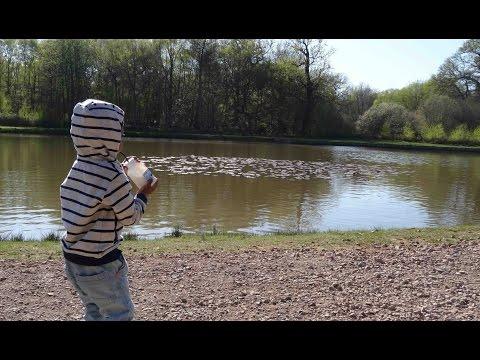 Savill Garden, Windsor Great Park - Vlog 2 - The Mummy Stylist