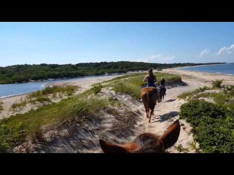 Long Island 2015- Horseback Riding