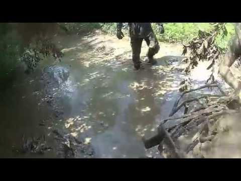 Rasga Tanga em Murici dos Portelas 04-04-15