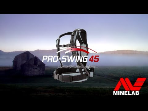 Pro Swing 45 Review