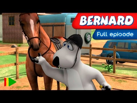 Bernard Bear - 133 - Dressage
