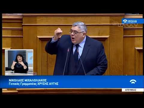 Ν. Μιχαλολιάκος: Δεν δίνουμε ψήφο εμπιστοσύνης | 15/01/19 | ΕΡΤ