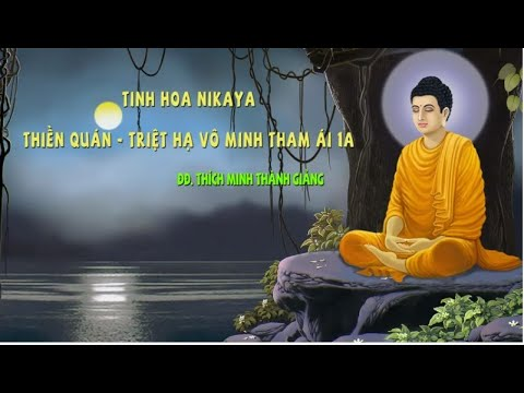 Tinh Hoa NIKAYA - Thiền Quán - Triệt Hạ Vô Minh Tham ÁI 1A