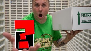 SURPRISING ME WITH A BOX OF NEW SNAKES!! UNBOXING UNKNOWN SNAKES!! | BRIAN BARCZYK by Brian Barczyk