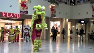 Lion Dance at the Oriental Plaza mall, BeiJing 北京