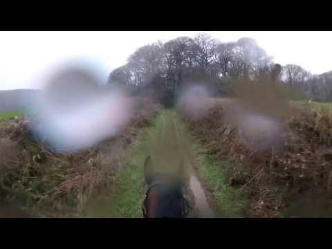 Ratsastaja ei saa hevosta pysähtymään! – Kuumottava tilanne