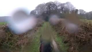 Британец от первого лица снял попытку прокатиться на бывшей скаковой лошади