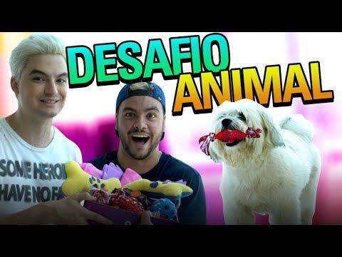 DESAFIO CANINO! TREINAMENTO DA CACHORRINHA DO FELIPE!  (PROFISSIONAL!)