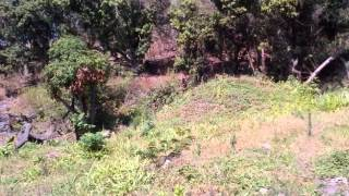 Stanger / Kwadukuza South Africa  City new picture : Vacant Land For Sale in Kwadukuza, Stanger, South Africa for ZAR R 390 000