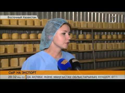 В ВКО цех по переработке молока намерен выйти на рынок РФ