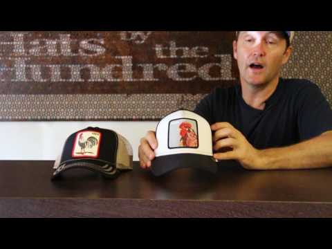 Goorin Bros Animal Series Hat Review - Hats By The Hundred