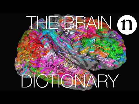 The brain dictionary - where are the words in your head?