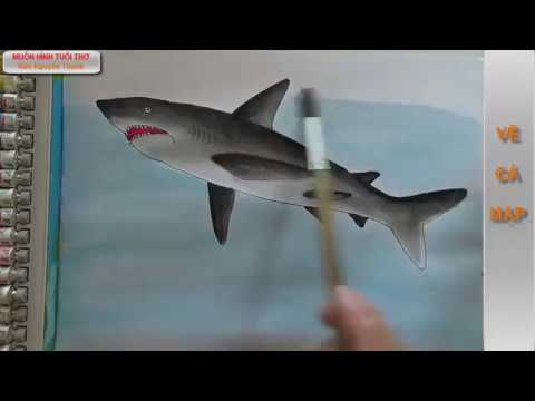 Vẽ cá mập -shark painting